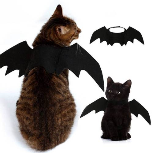 2019 New Halloween Pet Dog Costumes Bat Wings Vampire Black Cute Fancy Dress Up Halloween Pet Dog Cat Costume-in Cat Clothing from Home & Garden on Aliexpress.com | Alibaba Group